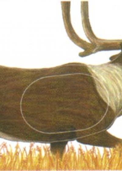 Caribou, Group 1