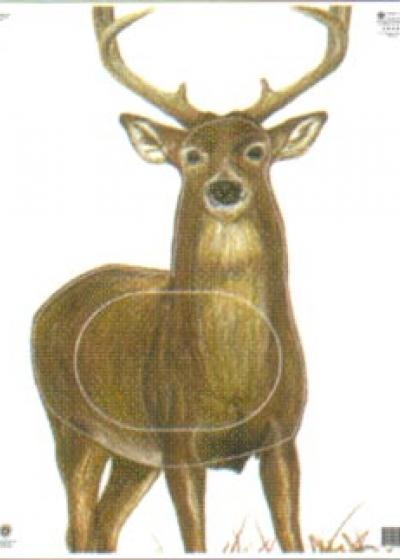 Deer, Group 2
