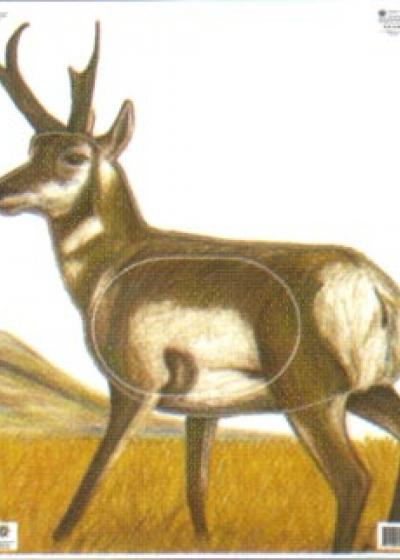 Antelope, Group 2